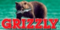 Катера Grizzly